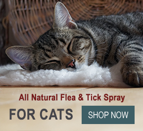 pioneer-herbal-products-cat-spray